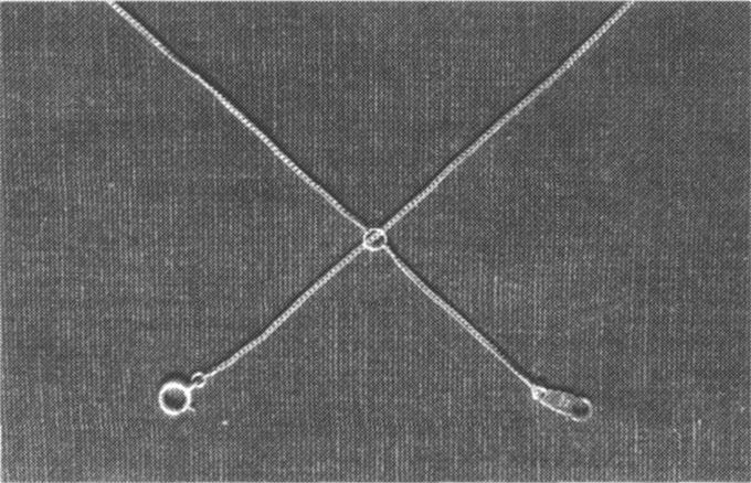 ネックレスに現れた超物理現象